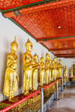 Buddha in Wat Pho Stockfotos