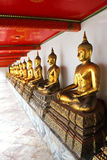 Buddha in Wat Pho Temple sequential nicely in Bangkok Royalty Free Stock Photo