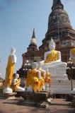 buddha white Arkivfoton