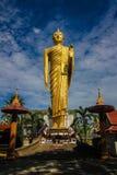buddha wizerunku odprowadzenie Zdjęcie Stock