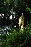 The Buddha in the woods stock photo
