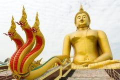 Buddha y dragón gigantes Fotos de archivo libres de regalías