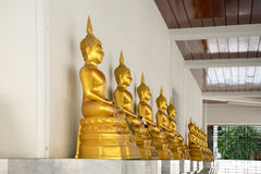 buddha złota rzędu statua Zdjęcia Stock