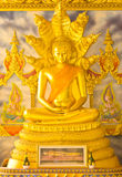 buddha złota statua Obraz Stock