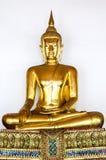 Buddha złota statua Fotografia Stock