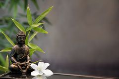 Buddha Zen. Buddha with orchid flower and bamboo Stock Photography