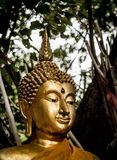 Buddha. Zen temple thailand Royalty Free Stock Image