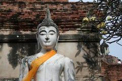 Buddhabilden på historiska Ayutthaya parkerar royaltyfri foto
