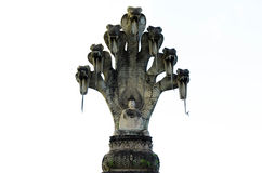 Buddhabildisolat Royaltyfria Foton