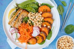 Buddhabunken med grönsaker, tofu, bakade sötpotatisen, spirar c Royaltyfri Bild