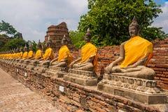 Buddhachedis på Ayuthaya Royaltyfri Bild