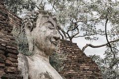 Buddhaframsidan i historiskt parkerar i det KamphaegPhet landskapet royaltyfria foton