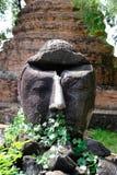 Buddhahuvud i Ayutthaya den historiska templet arkivbilder