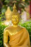 Buddhahuvudet i den Thailand templet Arkivbilder