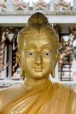 Buddhahuvudet i thai tempel Arkivbilder