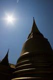 Buddhapagod Arkivfoton