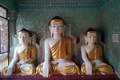 Buddhas в виске стоковое изображение