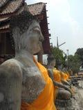 Buddhas в Ayuthaya стоковые фото