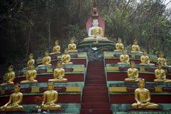 Buddhas и змейка стоковые изображения