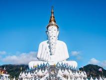5 Buddhas на виске phasornkaew Wat стоковые фото