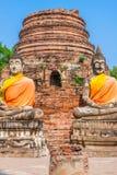 Buddhas на виске Wat Yai Chai Mongkol в Ayutthaya, Thail стоковое фото