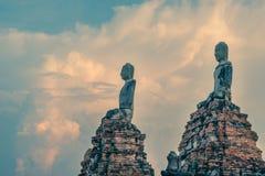 Buddhas на Wat Chaiwatthanaram, буддийском виске, Ayutthaya Histo Стоковая Фотография RF