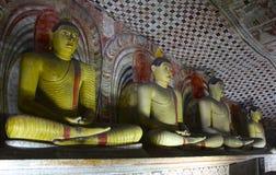 Buddhas, пещеры Dambulla, Шри-Ланка стоковые фотографии rf