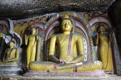 buddhas стоковое фото
