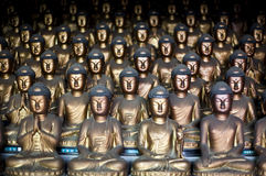 buddhas 库存照片