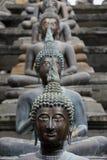 Buddhas 库存图片