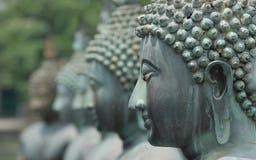 buddhas stock foto's