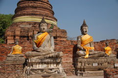 Buddhas. In a row in Ayuthaya, Thailand Royalty Free Stock Image
