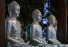 3 Buddhas d'argento in una posa del loto Immagine Stock Libera da Diritti