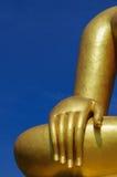 Buddhas Hand lizenzfreie stockbilder
