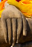 Buddhas hand Royalty Free Stock Photos