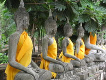 Buddhas in Line Royalty Free Stock Photos