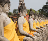 Buddhas lined up next to each other Royalty Free Stock Images