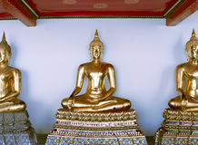 Buddhas Meditating Royalty Free Stock Photo