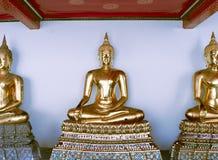 buddhas meditating стоковое фото rf