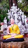 Buddhas Meditating Fotografia de Stock Royalty Free