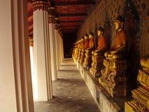 Buddhas Meditating Fotografia de Stock