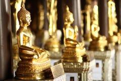 Buddhas Meditating tailandia Fotos de archivo libres de regalías