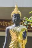 Buddhas nel tempio Immagini Stock