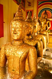 Buddhas in a row in old temple Royalty Free Stock Image