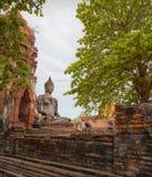Buddhaskulptur. Thailand Ayuthaya Arkivfoton