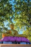 Buddhastatue в северном Таиланде Стоковое Фото