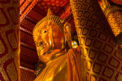Buddhastaty i Ayutthaya Royaltyfri Fotografi
