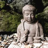 Buddhastaty i en trädgård arkivbilder