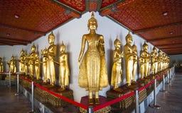 Buddhastaty i linje på Wat Pho Arkivfoto