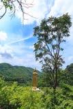 Buddhastaty i templet nordliga Thailand Royaltyfria Bilder